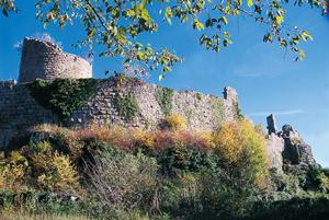 Château du Frankenbourg